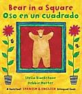 Bear in a Square/Oso En Un Cuadrado