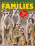 Amazing Animal Families