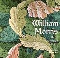 William Morris: Artist Craftsman Pioneer (Masterworks)