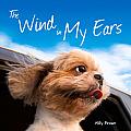The Wind in My Ears