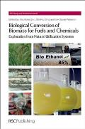 Biological Conversion of Biomass for Fuels and Chemicals: Explorations from Natural Utilization Systems (RSC Energy and Environment)
