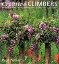 Creative Climbers Inventive Ideas For G