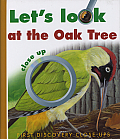 Let's Look at the Oak Tree