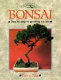 Bonsai Step By Step To Growing Success