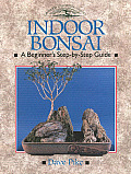 Indoor Bonsai A Beginners Step By Step Guide