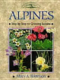 Alpines :step by step to growing success