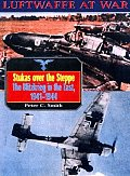 Stukas Over The Steppe The Blitzkrieg
