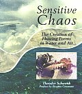 Sensitive Chaos The Creation Of Flow 2nd Edition