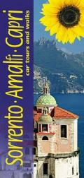 Sorrento, Amalfi and Capri: Car Tours and Walks