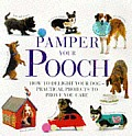 Pamper Your Pooch How To Delight Your Do