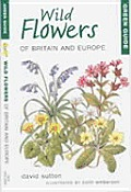 Green Guide Wild Flowers Of Britain & Europ