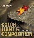 Color, Light & Composition: A Photographer's Guide
