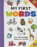 My First Words: Over 300 Everyday Words and Pictures