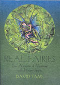 Real Fairies True Accounts of Meetings With Nature Spirits