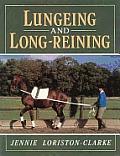 Lungeing & Long Reining