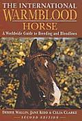 International Warmblood Horse