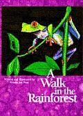 Walk in the Rainforest