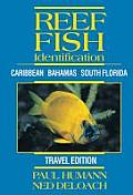 Reef Fish Identification - Travel Edition - Caribbean Bahamas South Florida Cover