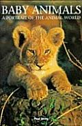 Baby Animals (Portrait of the Animal World)