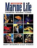 *guide To Marine Life : Caribbean-bahama (96 Edition)