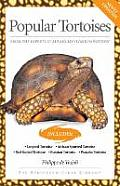 Popular Tortoises From the Experts at Advanced Vivarium Systems