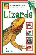 Lizards: (Beginning Vivarium Systems)