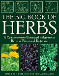 Big Book Of Herbs A Comprehensive Illustrated
