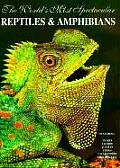 Worlds Most Spectacular Reptiles & Amphibians
