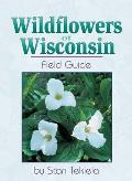 Wildflowers Of Wisconsin Field Guide