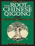 Root of Chinese Qigong Secrets of Health Longevity & Enlightenment