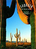 Saguaro The Desert Giant