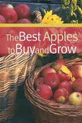 Best Apples To Buy & Grow
