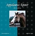 Appaloosa Spirit Spirit Of The House