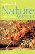 New England Nature Watch
