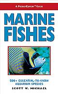 Marine Fishes 500 Essential To Know Aquarium Species