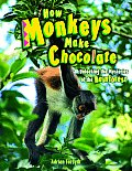 How Monkeys Make Chocolate Unlocking the Mysteries of the Rain Forest