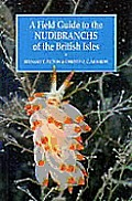 Field Guide to the Nudibranchs of the British Isles