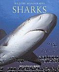 Sharks (Wildlife Monographs)