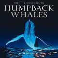 Humpback Whales (Wildlife Monographs)