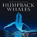 Humpback Whales (Wildlife Monographs)
