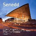 Senedd: the National Assembly for Wales Building Designed By Richard Rogers