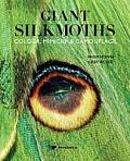 The Giant Silkmoths: Colour, Mimicry & Camouflage