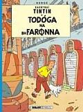 Tintin: Todoga Na Bhfaronna