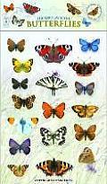 Sticker Play Scene: Butterflies