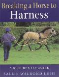 Breaking the Horse to Harness: A Step-By-Step Guide