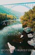 Place To Pay Attention