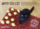 My Sad Cat Notecards: 10 Cards and Envelopes