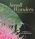 Small Wonders: A Close Look at Nature's Miniatures