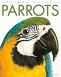Parrots (Amazing Animals)