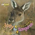 Joey to Kangaroo (Life Cycles)